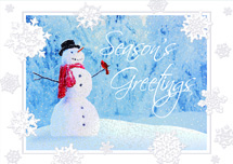Snow Friends Holiday Cards